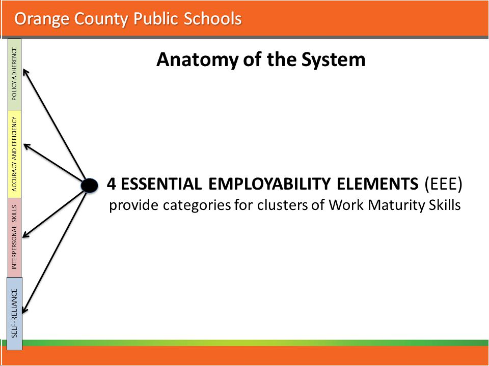 4 ESSENTIAL EMPLOYABILITY ELEMENTS (EEE) provide categories for clusters of Work Maturity Skills POLICY ADHERENCE ACCURACY AND EFFICIENCY INTERPERSONAL SKILLS SELF-RELIANCE Anatomy of the System