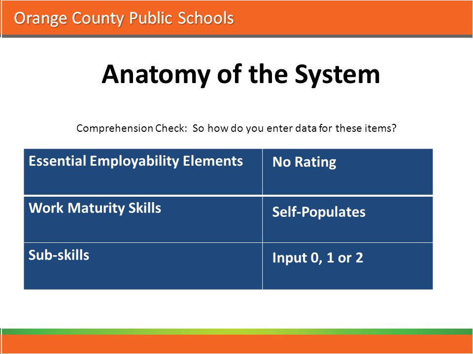 Anatomy of the System Comprehension Check: So how do you enter data for these items.