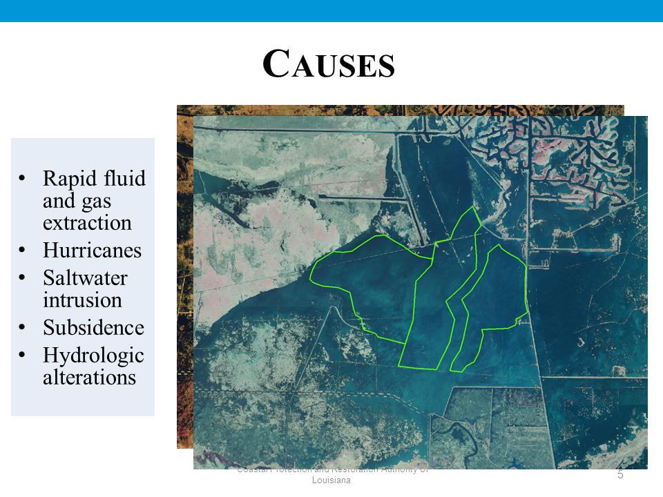 Coastal Protection and Restoration Authority of Louisiana C AUSES Rapid fluid and gas extraction Hurricanes Saltwater intrusion Subsidence Hydrologic alterations 5