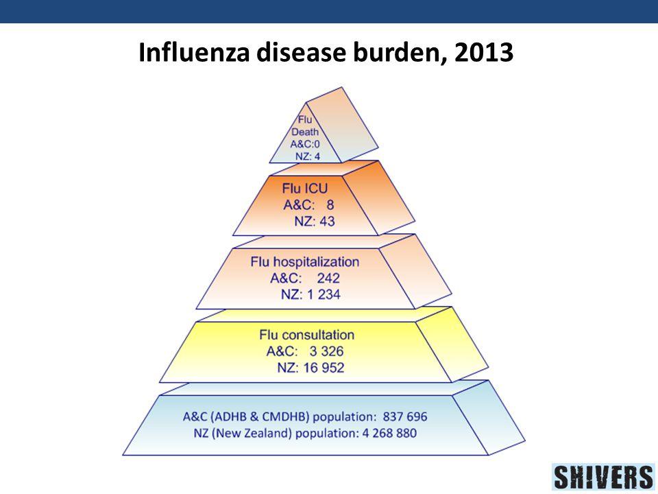 Influenza disease burden, 2013