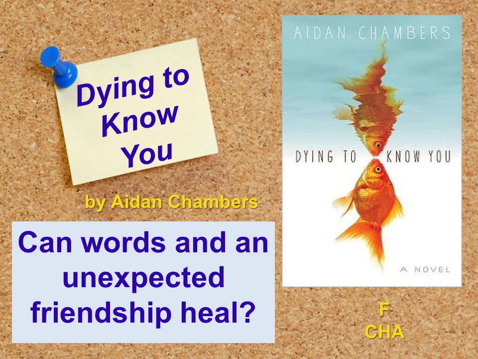 Dying to Know You Can words and an unexpected friendship heal by Aidan Chambers FCHA