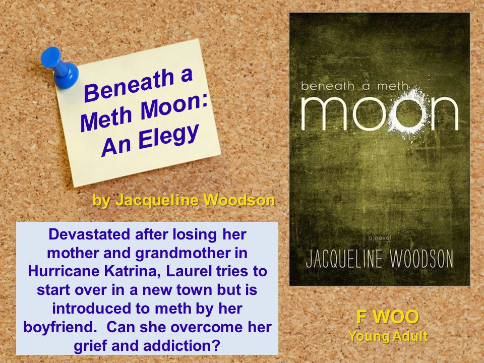 Beneath a Meth Moon: An Elegy Devastated after losing her mother and grandmother in Hurricane Katrina, Laurel tries to start over in a new town but is introduced to meth by her boyfriend.