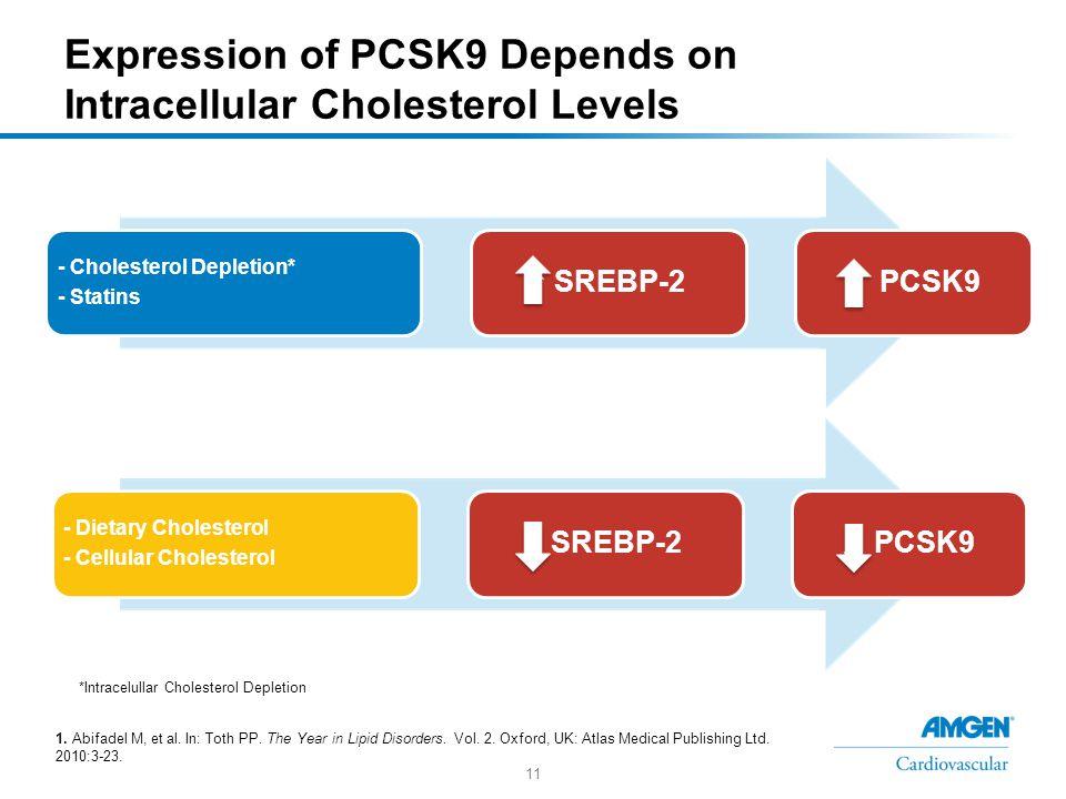 11 Expression of PCSK9 Depends on Intracellular Cholesterol Levels - Cholesterol Depletion* - Statins ↑ SREBP-2↑ PCSK9 - Dietary Cholesterol - Cellular Cholesterol ↓ SREBP-2↓ PCSK9 *Intracelullar Cholesterol Depletion 1.