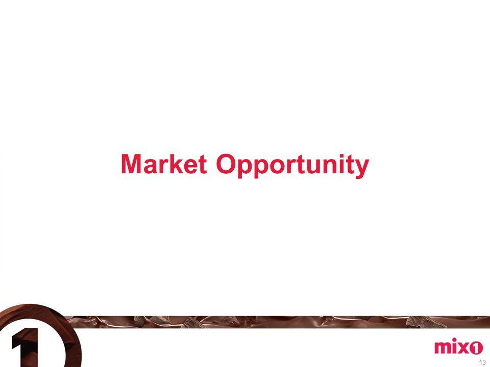 Market Opportunity 13
