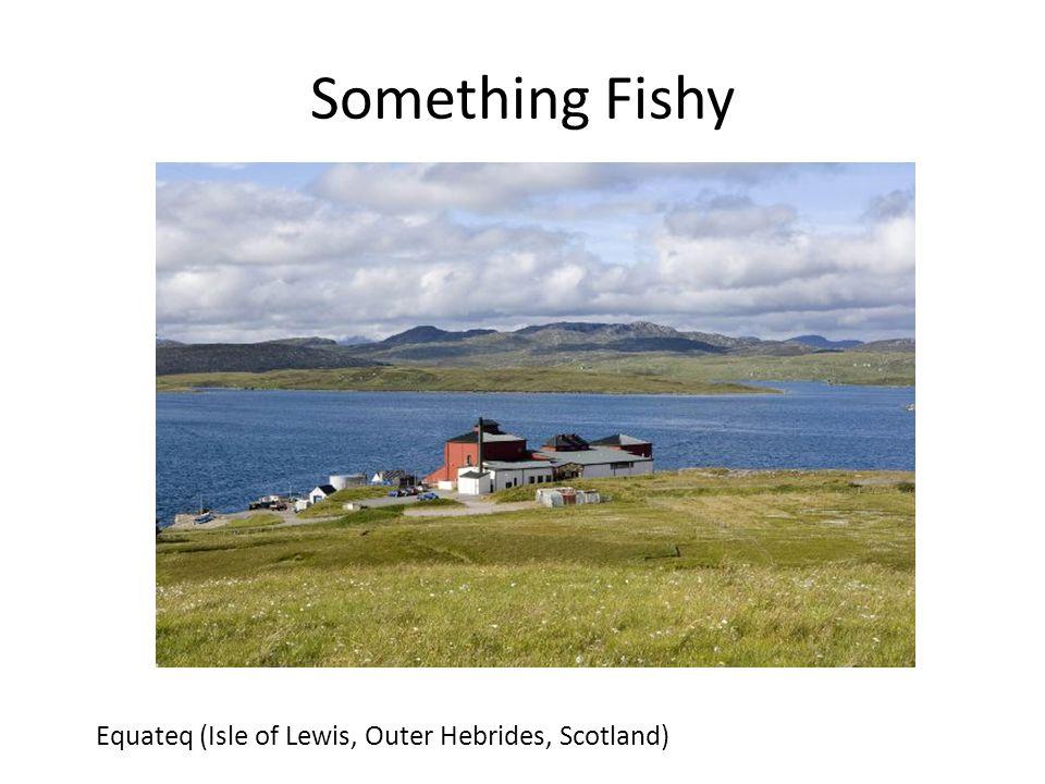 Something Fishy Equateq (Isle of Lewis, Outer Hebrides, Scotland)