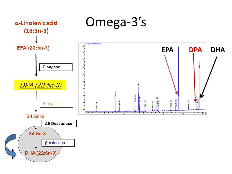 Omega-3's EPA DPA DHA EPA (20:5n-3) DPA (22:5n-3) 24:5n-3 DHA (22:6n-3) 24:6n-3 Elongase Δ5-Desaturase β-oxidation Elongase α-Linolenic acid (18:3n-3)