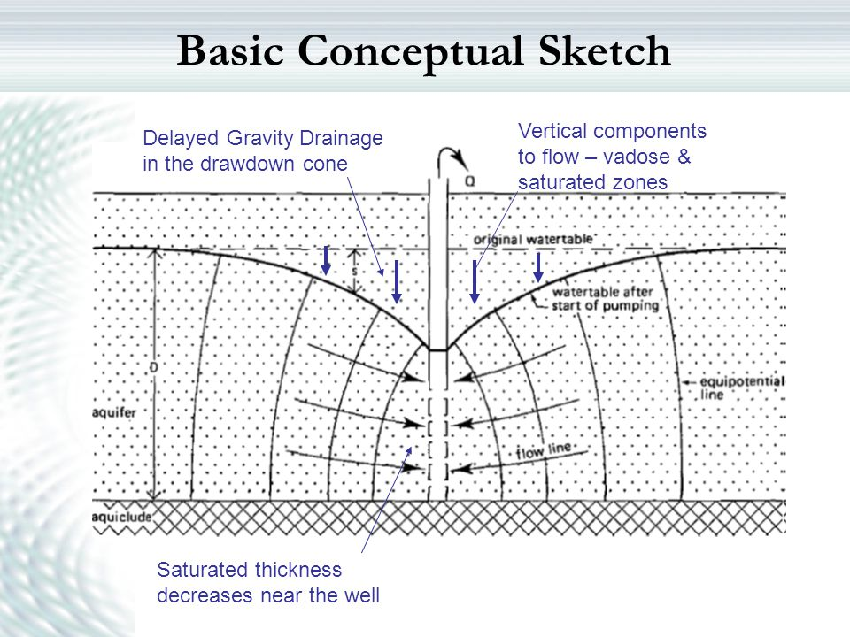 Basic Conceptual Sketch Delayed Gravity Drainage in the drawdown cone Saturated thickness decreases near the well Vertical components to flow – vadose
