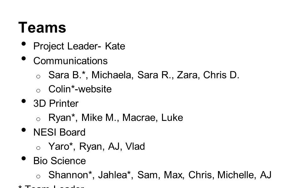 Teams Project Leader- Kate Communications o Sara B.*, Michaela, Sara R., Zara, Chris D. o Colin*-website 3D Printer o Ryan*, Mike M., Macrae, Luke NES