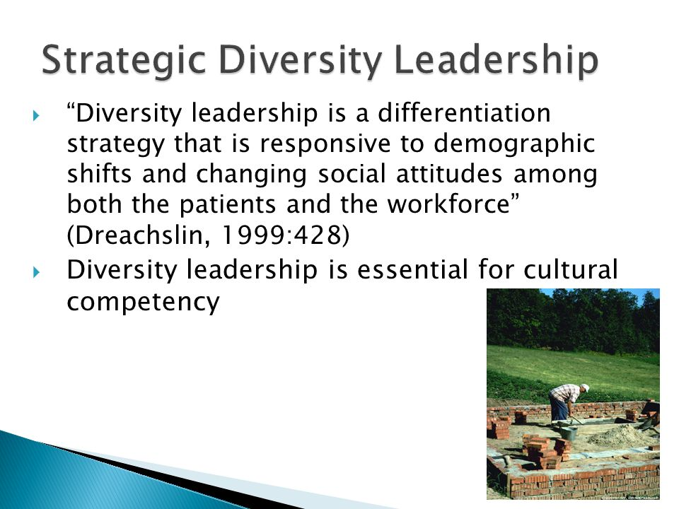 Strategic Diversity Leadership  Diversity leadership is a differentiation strategy that is responsive to demographic shifts and changing social attitudes among both the patients and the workforce (Dreachslin, 1999:428)  Diversity leadership is essential for cultural competency