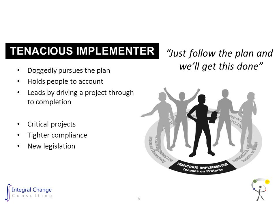 Doggedly pursues the plan Holds people to account Leads by driving a project through to completion Critical projects Tighter compliance New legislation Just follow the plan and we'll get this done TENACIOUS IMPLEMENTER 5