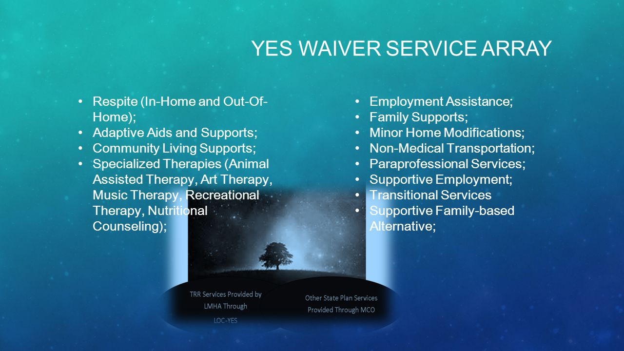 YES WAIVER SERVICE ARRAY Respite (In-Home and Out-Of- Home); Adaptive Aids and Supports; Community Living Supports; Specialized Therapies (Animal Assisted Therapy, Art Therapy, Music Therapy, Recreational Therapy, Nutritional Counseling); Employment Assistance; Family Supports; Minor Home Modifications; Non-Medical Transportation; Paraprofessional Services; Supportive Employment; Transitional Services Supportive Family-based Alternative;