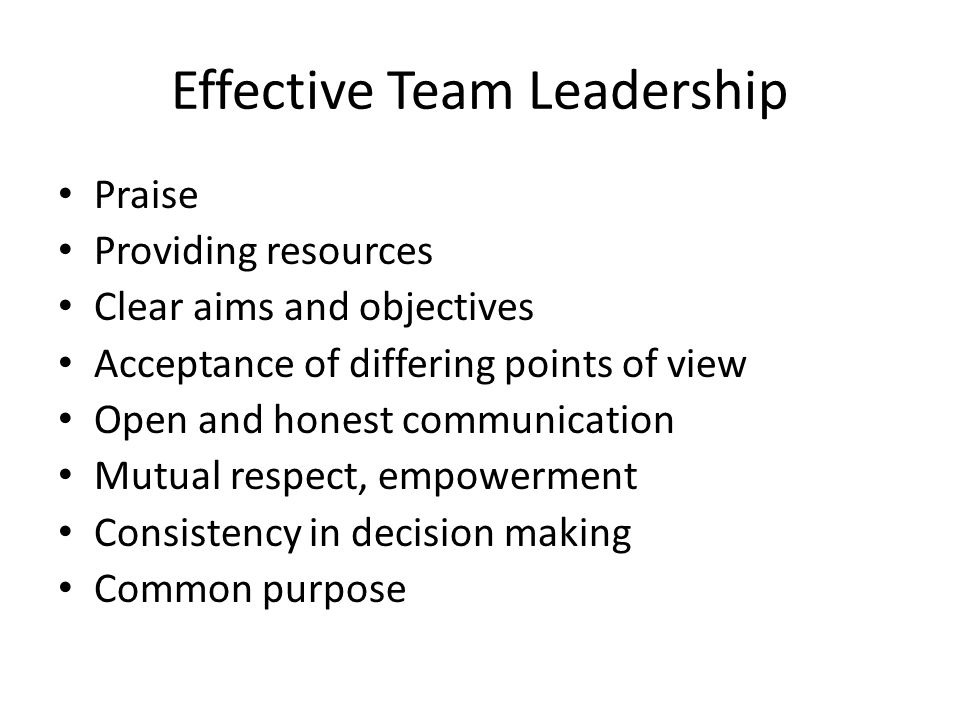Effective Team Leadership Praise Providing resources Clear aims and objectives Acceptance of differing points of view Open and honest communication Mutual respect, empowerment Consistency in decision making Common purpose