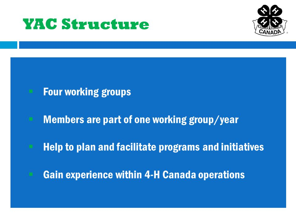  Four working groups  Members are part of one working group/year  Help to plan and facilitate programs and initiatives  Gain experience within 4-H Canada operations