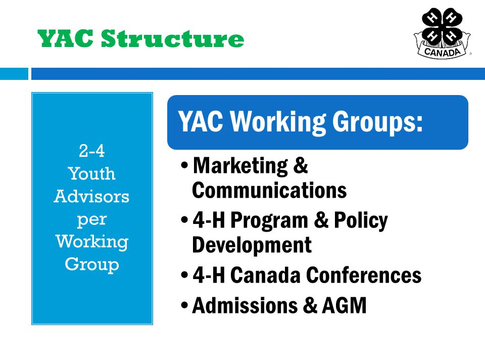 YAC Structure 2-4 Youth Advisors per Working Group YAC Working Groups: Marketing & Communications 4-H Program & Policy Development 4-H Canada Conferences Admissions & AGM