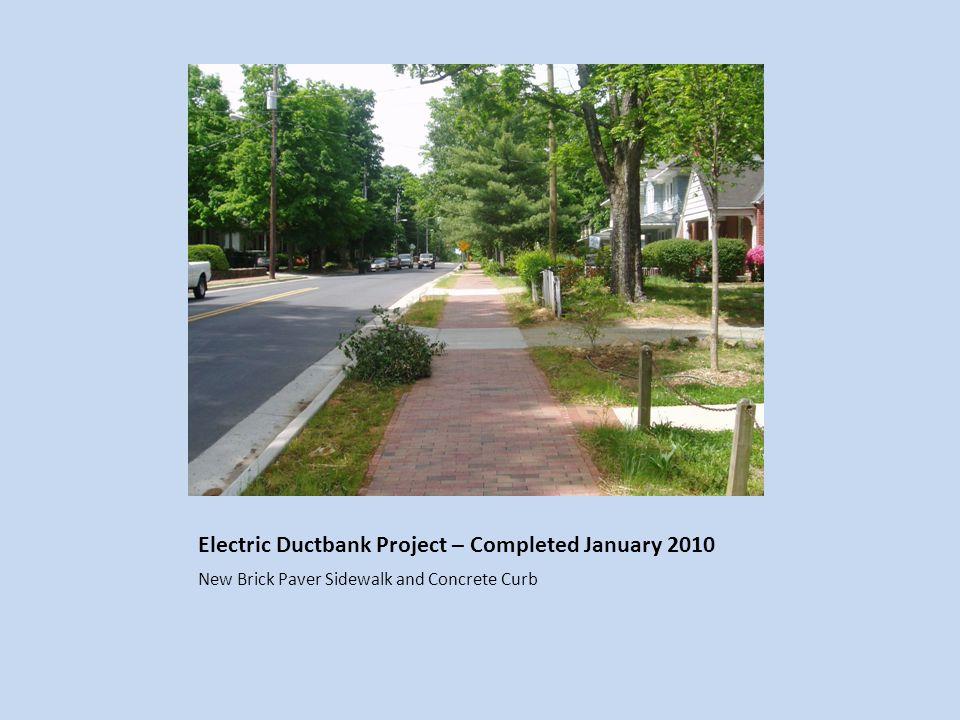 New Princeton Elm