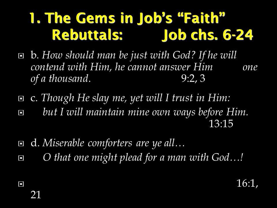1. The Gems in Job's Faith Rebuttals:Job chs. 6-24  b.