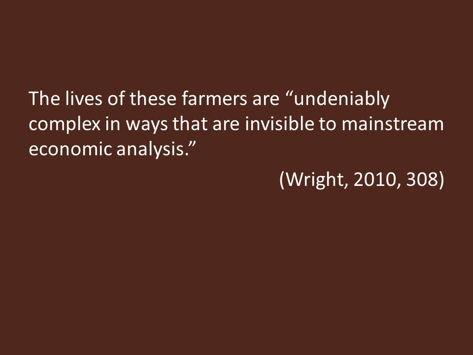 The lives of these farmers are undeniably complex in ways that are invisible to mainstream economic analysis. (Wright, 2010, 308)