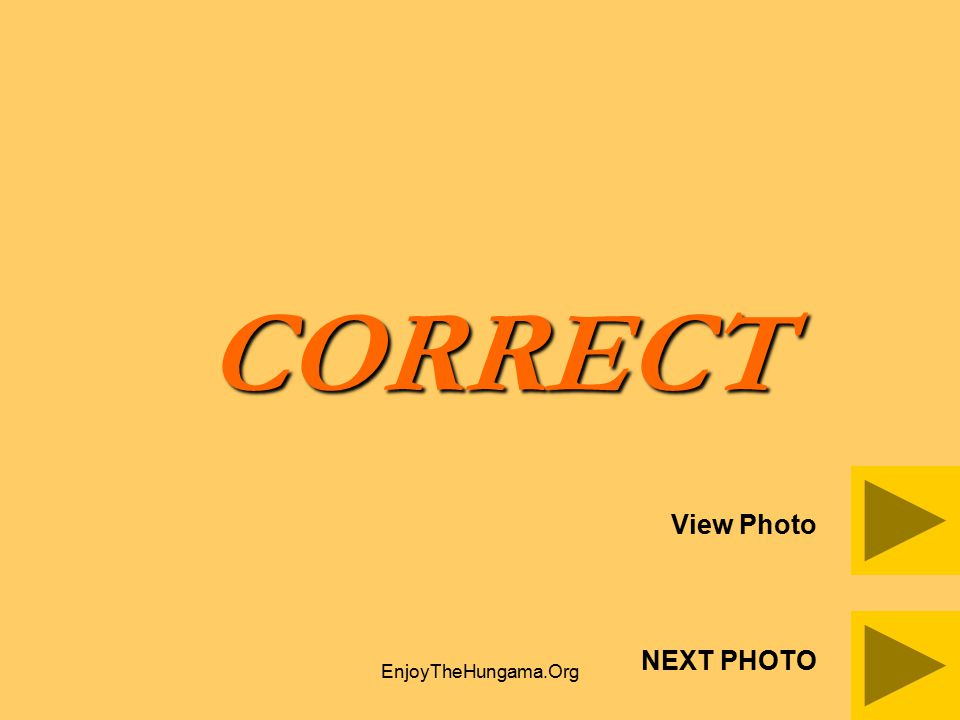 CORRECT View Photo NEXT PHOTO EnjoyTheHungama.Org
