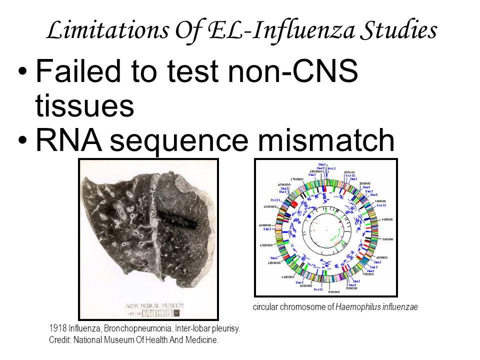 Limitations Of EL-Influenza Studies Failed to test non-CNS tissues RNA sequence mismatch circular chromosome of Haemophilus influenzae 1918 Influenza, Bronchopneumonia.