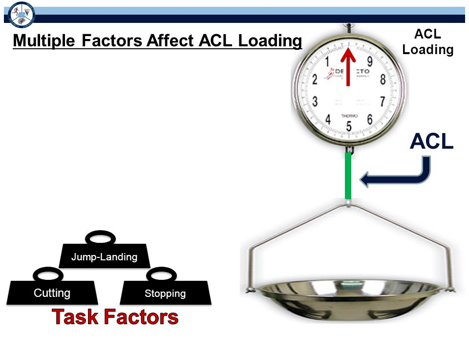 ACL Loading ACL Stopping Cutting Jump-Landing Multiple Factors Affect ACL Loading