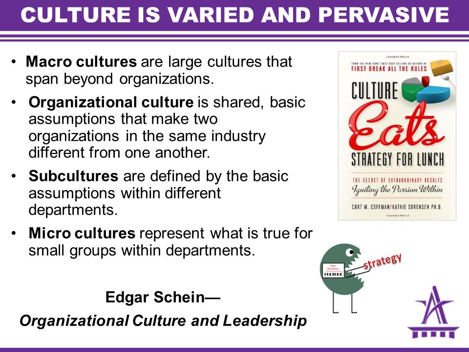 CULTURE IS VARIED AND PERVASIVE Macro cultures are large cultures that span beyond organizations.