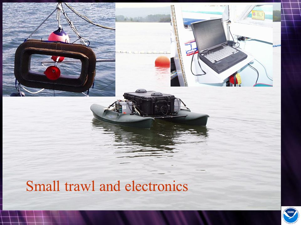 Small trawl and electronics