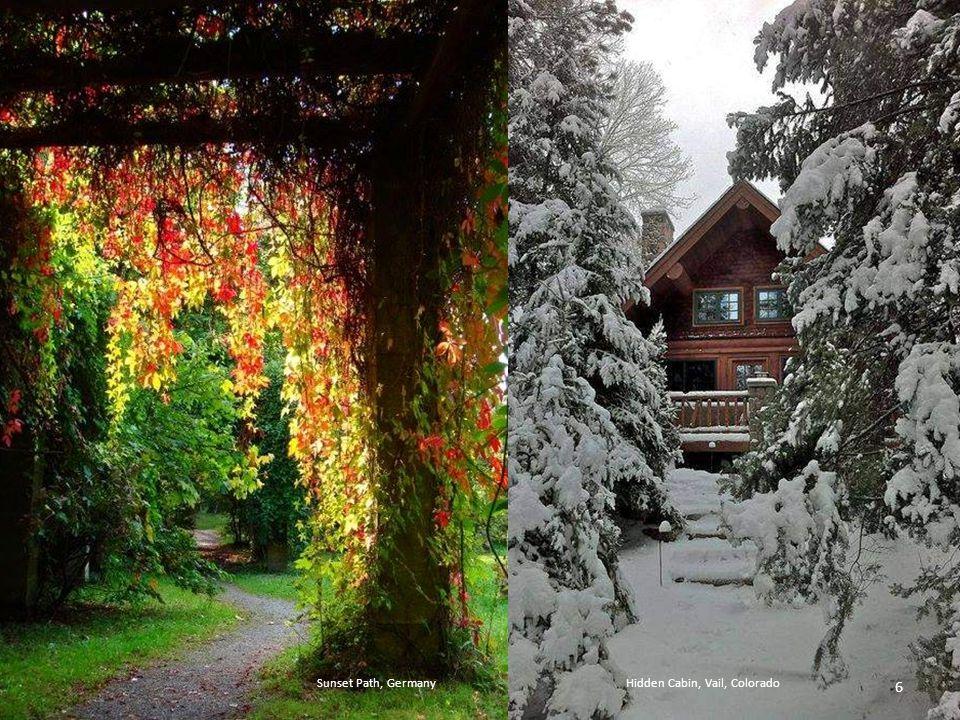 Tree House, The Enchanted WoodSnow Trees, Helsinki, Finland 5