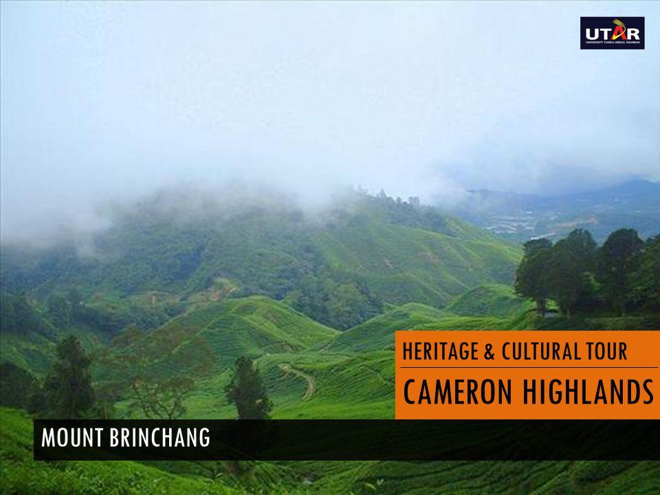 HERITAGE & CULTURAL TOUR CAMERON HIGHLANDS MOUNT BRINCHANG