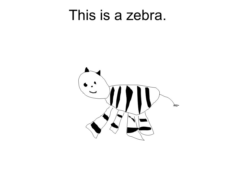 This is a zebra.