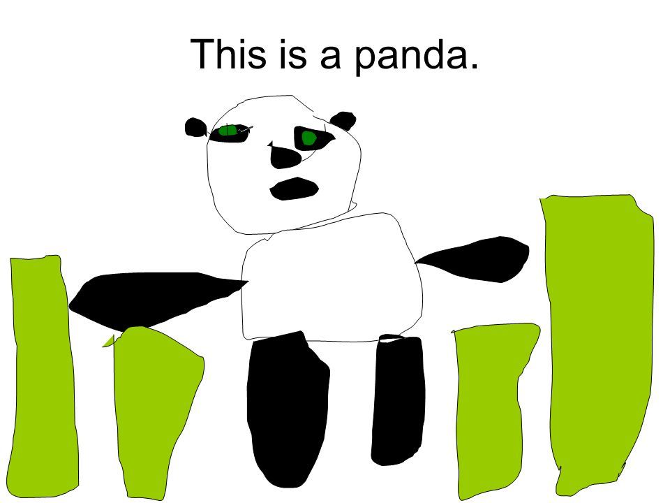 This is a panda.