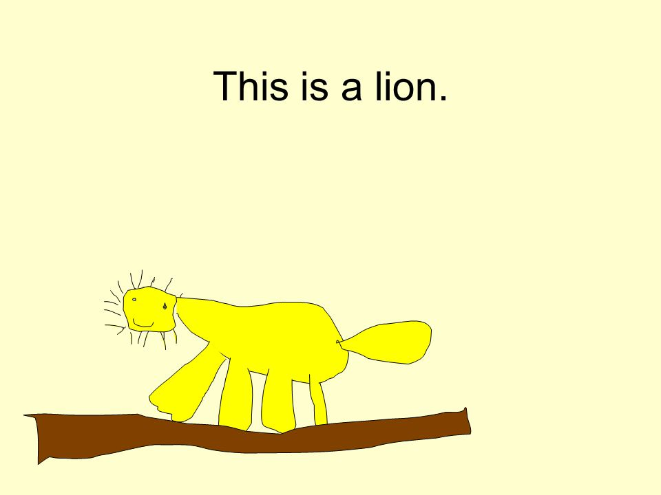 This is a lion.