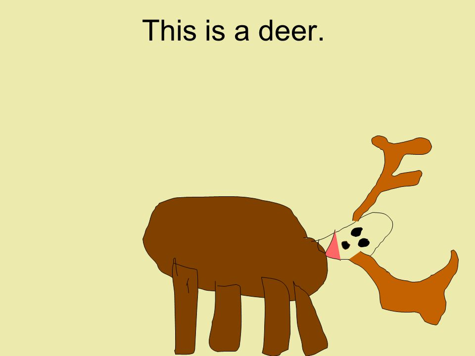 This is a deer.