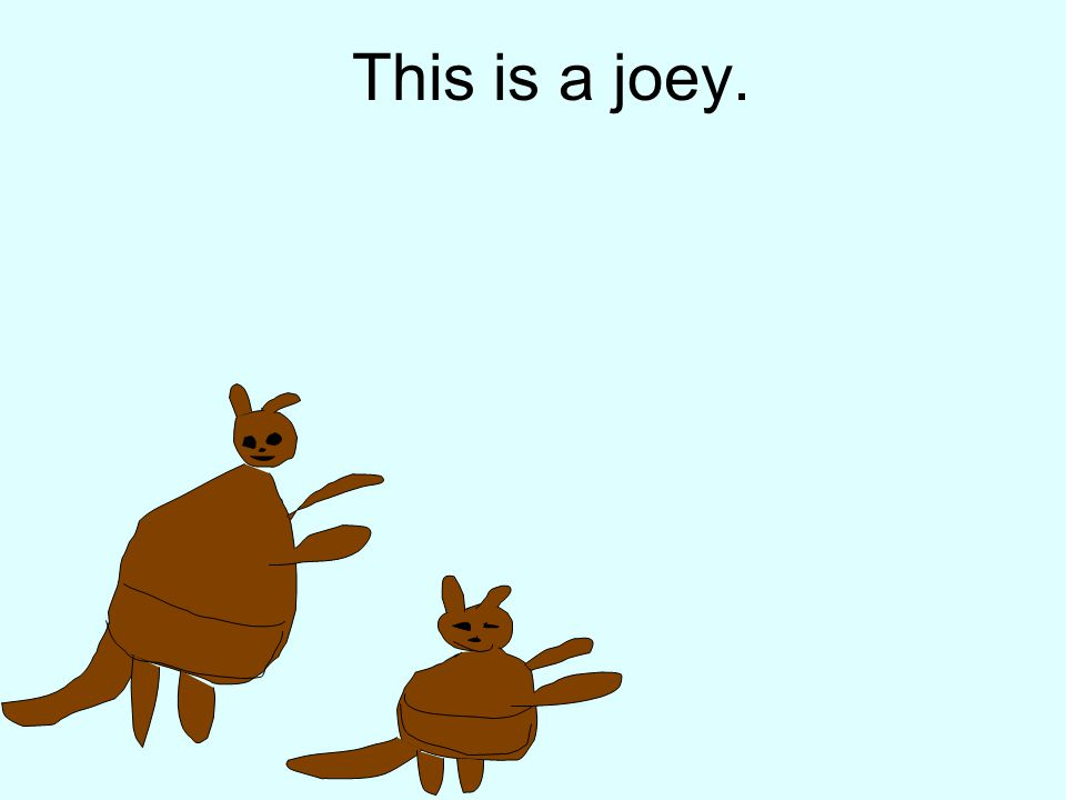 This is a joey.