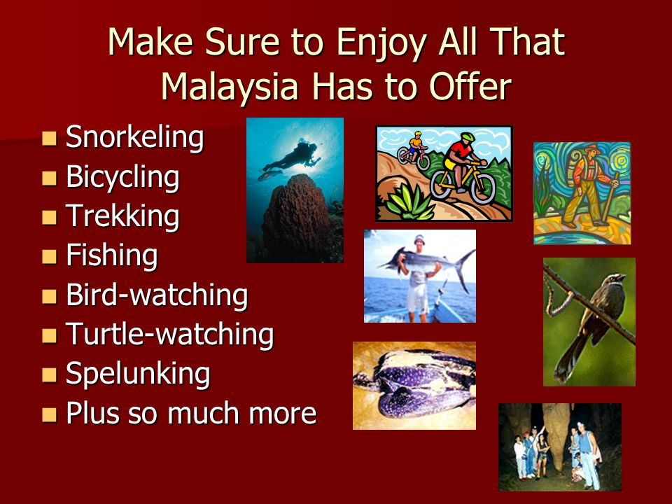 Make Sure to Enjoy All That Malaysia Has to Offer Snorkeling Bicycling Trekking Fishing Bird-watching Turtle-watching Spelunking Plus so much more