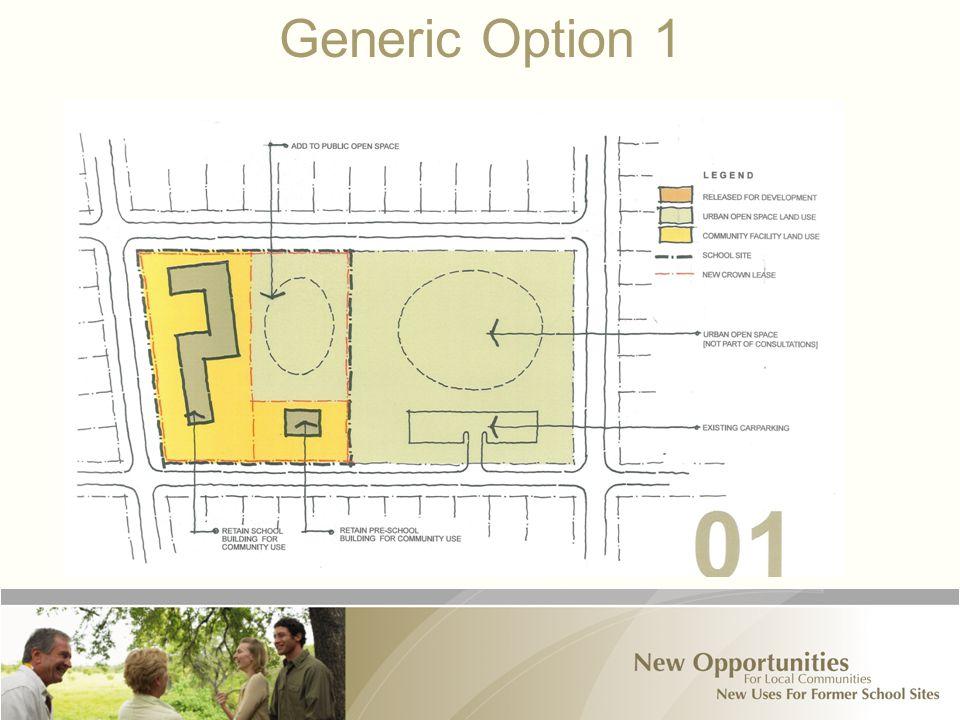 Generic Option 1
