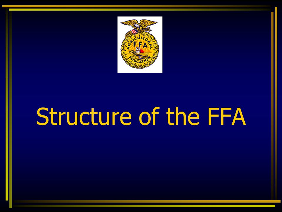 FFA Officers and Stations  The Advisor  Stationed by the owl  This office held by the agriculture teacher  Minimum of six officers  Additional officers may be established by the local chapter  Chaplin  Historian