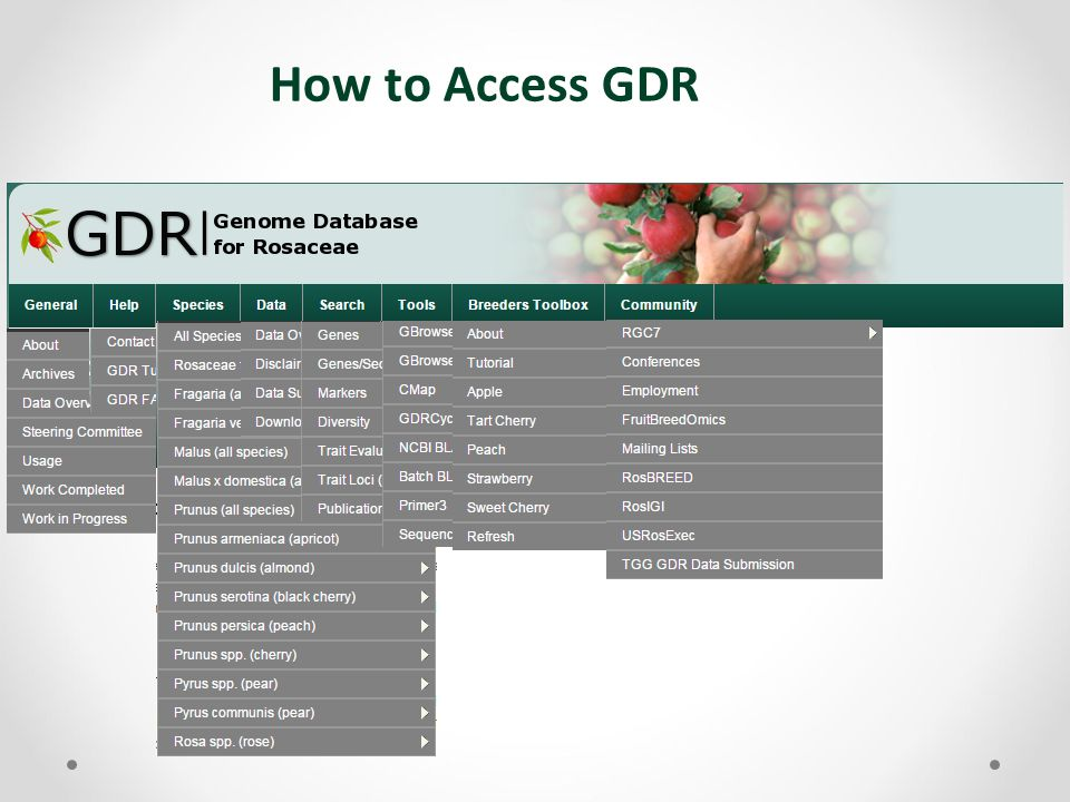 How to Access GDR
