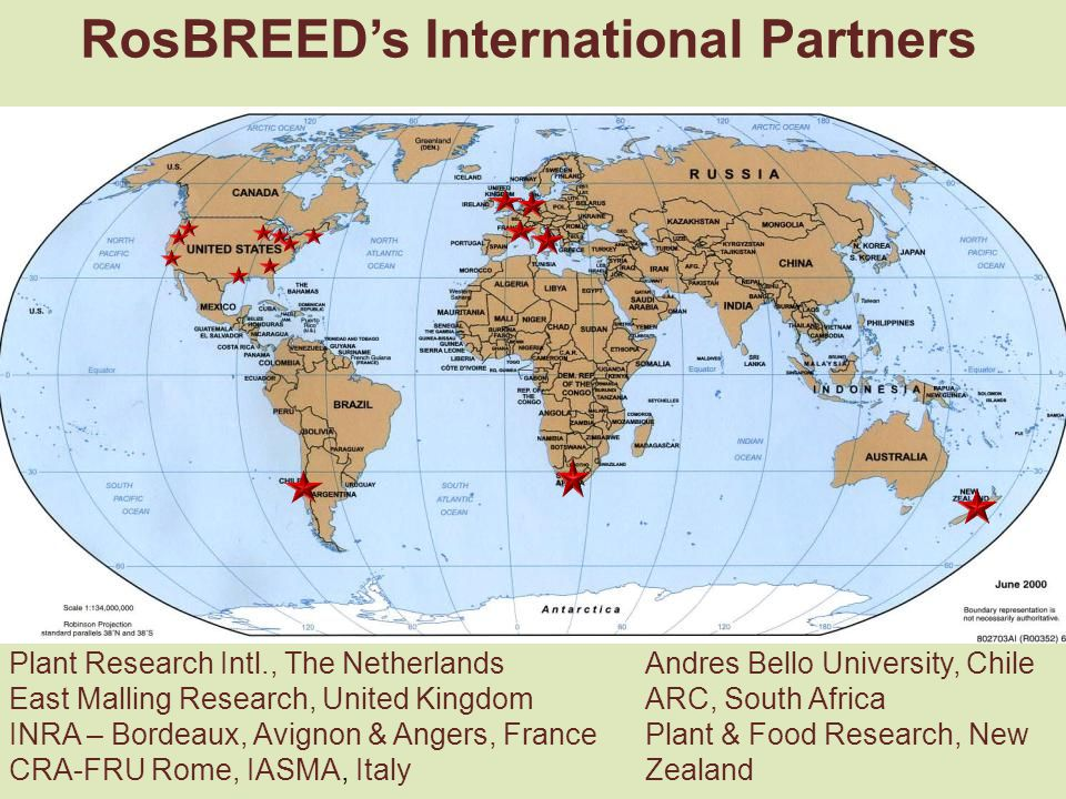 RosBREED's International Partners Plant Research Intl., The Netherlands East Malling Research, United Kingdom INRA – Bordeaux, Avignon & Angers, France CRA-FRU Rome, IASMA, Italy Andres Bello University, Chile ARC, South Africa Plant & Food Research, New Zealand