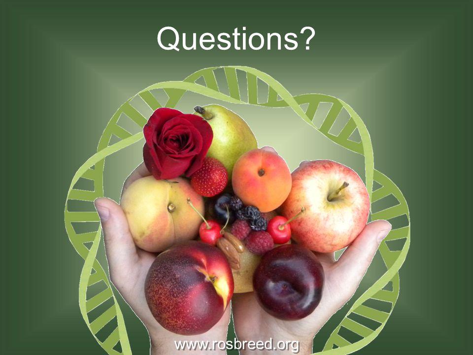 Questions www.rosbreed.org