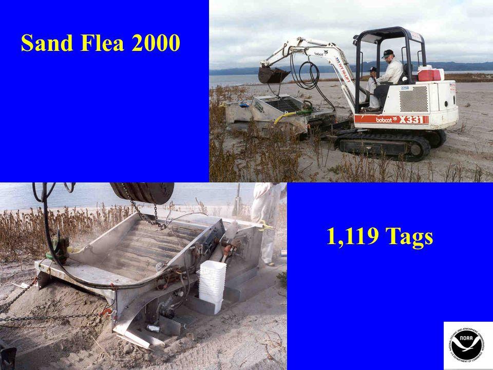 Sand Flea 2000 1,119 Tags