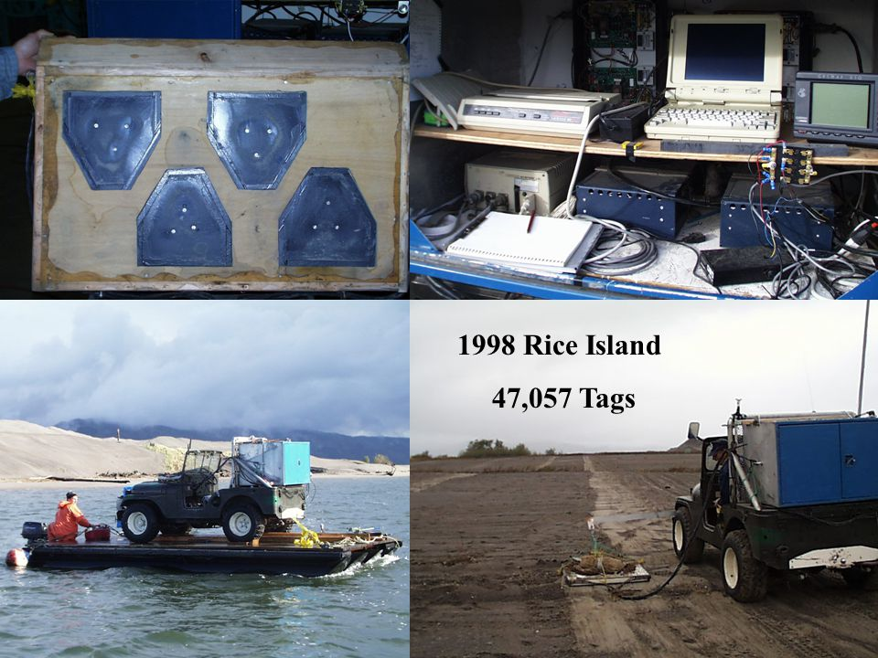 Ed Nunnallee-400Khz 1998 Rice Island 47,057 Tags