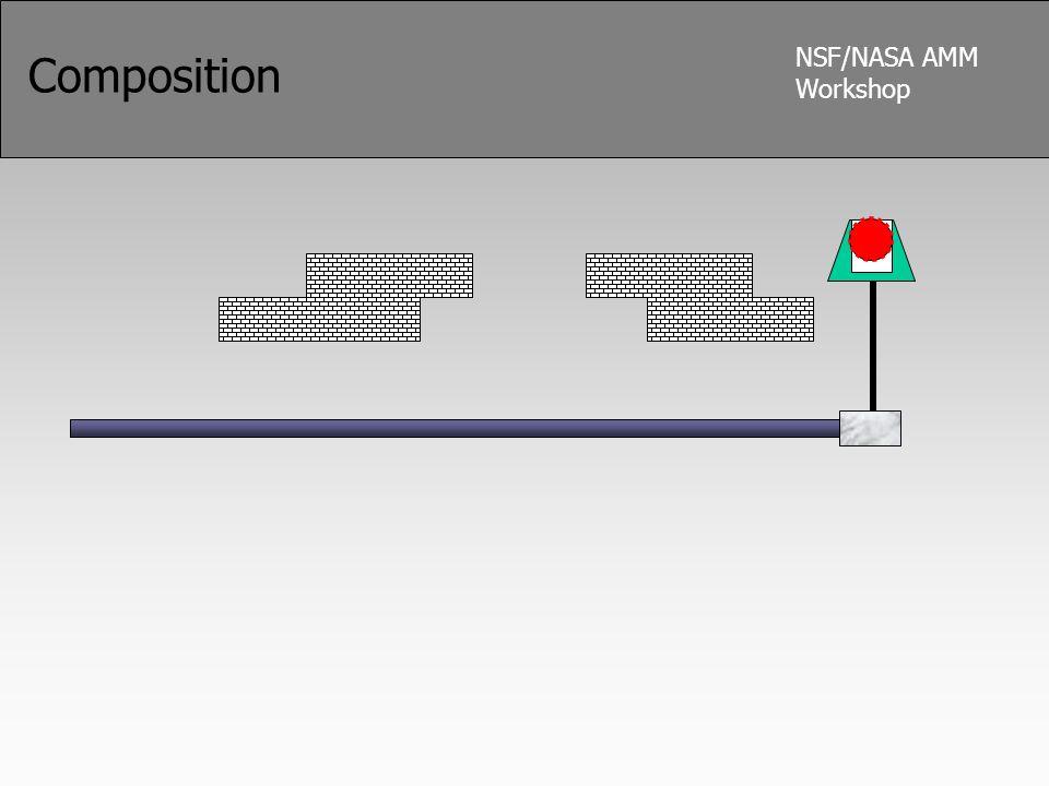 NSF/NASA AMM Workshop Composition