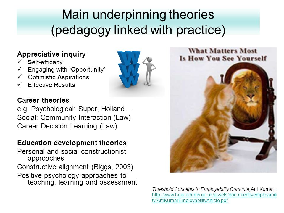 Main underpinning theories (pedagogy linked with practice) Appreciative inquiry Self-efficacy Engaging with 'Opportunity' Optimistic Aspirations Effective Results Career theories e.g.