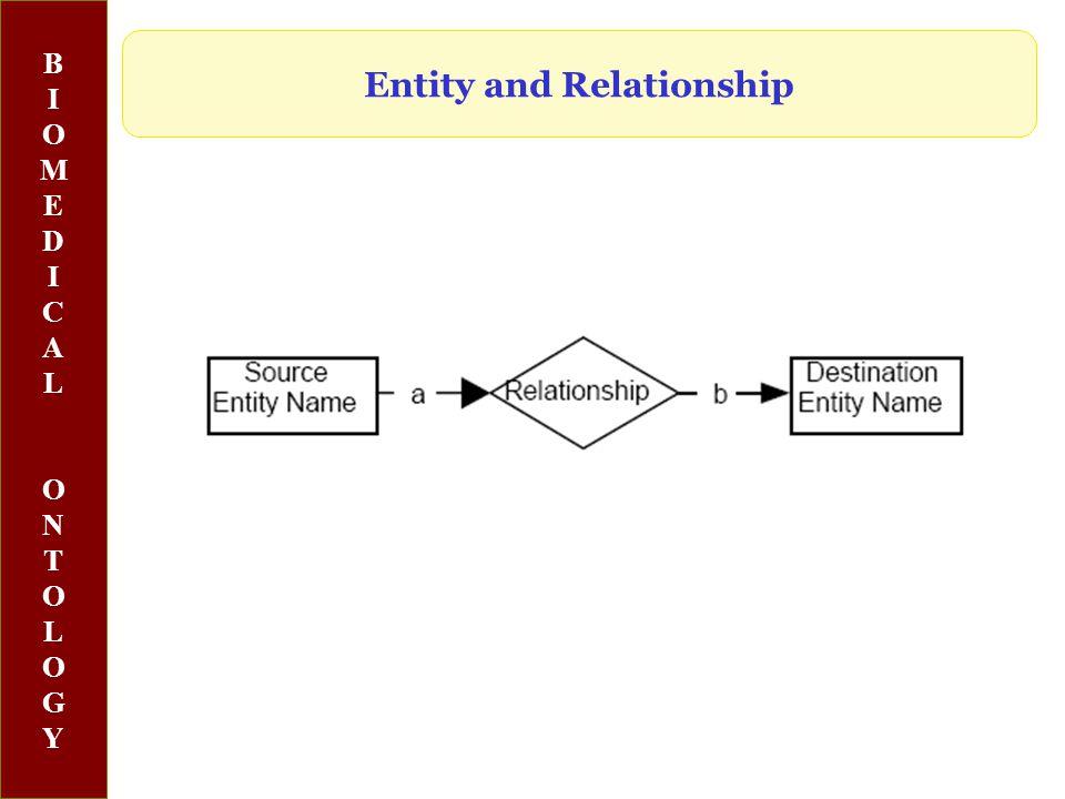 BIOMEDICALONTOLOGYBIOMEDICALONTOLOGY Entity and Relationship
