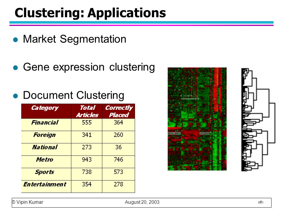 © Vipin Kumar August 20, 2003 13 Clustering: Applications l Market Segmentation l Gene expression clustering l Document Clustering