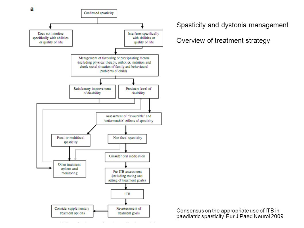 Spasticity and dystonia management Overview of treatment strategy Consensus on the appropriate use of ITB in paediatric spasticity. Eur J Paed Neurol