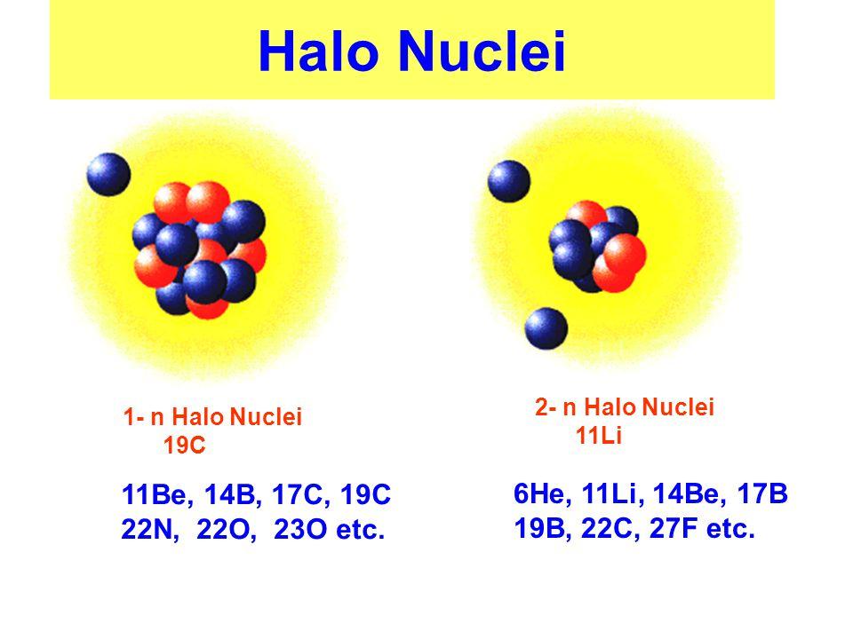 Halo Nuclei 1- n Halo Nuclei 19C 2- n Halo Nuclei 11Li 11Be, 14B, 17C, 19C 22N, 22O, 23O etc.