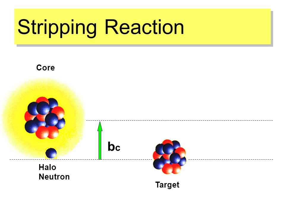 Stripping Reaction Target Core Halo Neutron bcbc