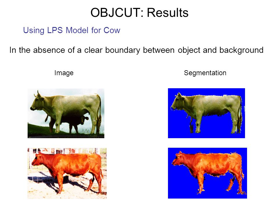 In the absence of a clear boundary between object and background SegmentationImage OBJCUT: Results Using LPS Model for Cow