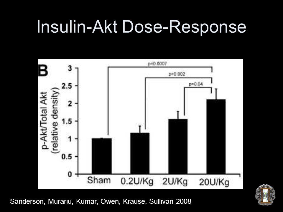 Insulin-Akt Dose-Response Sanderson, Murariu, Kumar, Owen, Krause, Sullivan 2008